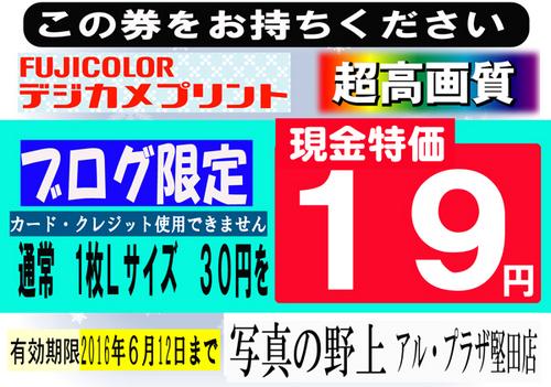 19円ブログ限定-特招会6.jpg